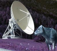 Satellitenantenne_der_Erdefunkanlage_Aflenz